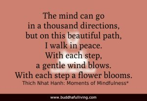 The mind can go in a thousand directions, but on this beautiful path, I walk in peace. With each step, a gentle wind blows. With each step a flower blooms. Thich Nhat Hanh: Moment of Mindfulness*