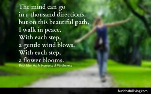 moments of mindfulness - this beautiful path