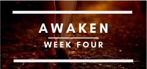 AWAKEN COURSE WEEK 4